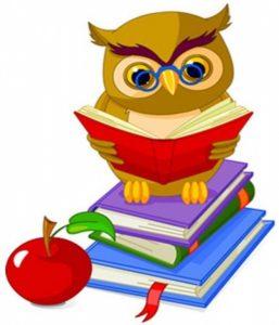 книга с совой